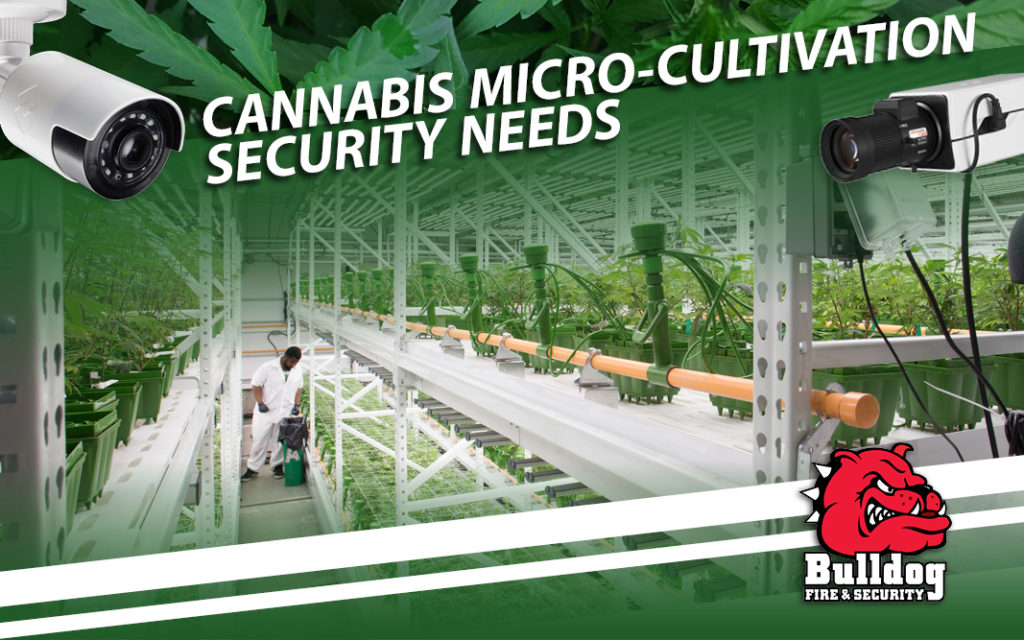 micro cultivation banner image