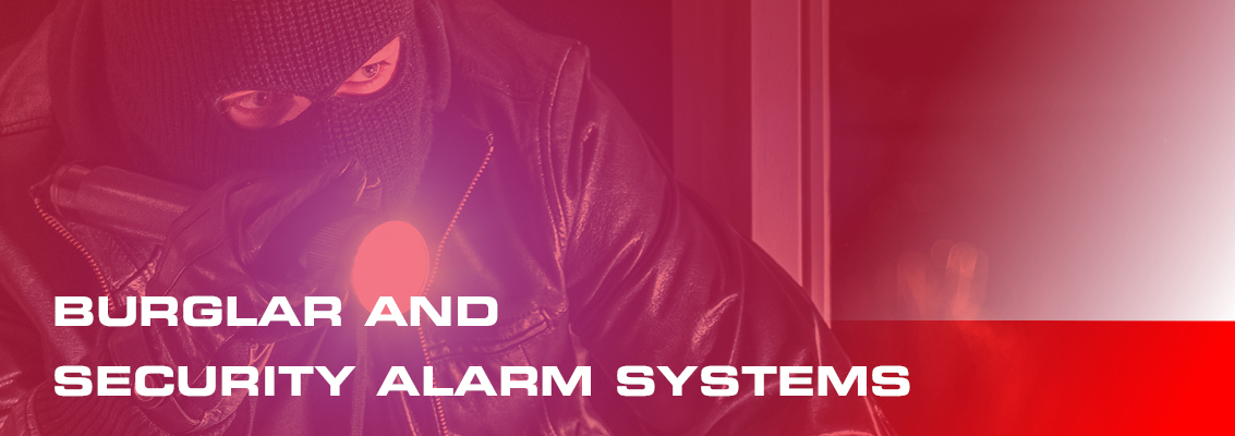 burglar and security alarm systems page header
